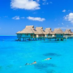 Picking one specific beach in Bora Bora was way too difficult! Visit the magical island of Bora Bora. Beautiful Islands, Beautiful Places, Places To Travel, Places To Visit, Travel Specials, Overwater Bungalows, Beaches In The World, Island Resort