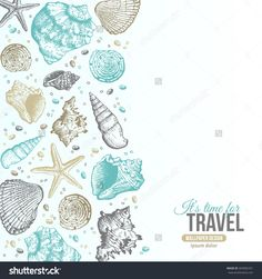 Summer Sea Shells Postcard Design. Vector Background With Seashells, Sea Star And Sand. Hand Drawn Etching Style. Place For Your Text. - 303082331 : Shutterstock