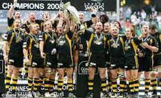 Wasps rugby club