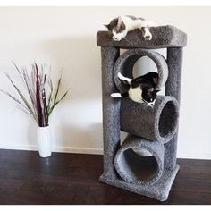 New Cat Condos Premier Triple Cat Tunnel - 18737018 - Overstock.com Shopping - The Best Prices on New Cat Condos Cat Furniture #CatFurniture