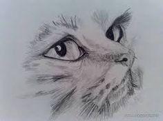 desene in creion cu animale simple - Căutare Google My Favorite Things, Wallpaper, Google, Animals, Animales, Animaux, Wallpapers, Animal, Animais