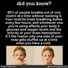 85% of people breathe out of one nostril at a time without realizing it. Your nostrils trade breathing duties every few hours, and whichever one you're using affects your body's glucose and oxygen levels and the activity of your brain hemisphere....