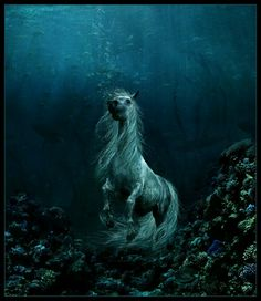The Kelpie is the supernatural shape-shifting water horse that haunts the rivers and streams of Scotland. It is probably one of the best known of Scottish water spirits and is often mistakenly thought to haunt lochs, which are the reserve of the Each Uisge. The creature could take many forms and had an insatiable appetite for humans; its most common guise was that of a beautiful tame horse standing by the riverside - a tempting ride for a weary traveller. Anybody foolish enough to mount the…