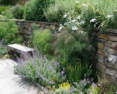 Natural stone wall with mixed stone sizes. Plant perennials in front with changes in sizes and textures to soften.