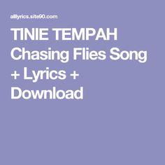 TINIE TEMPAH Chasing Flies Song + Lyrics + Download
