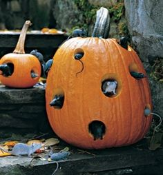 Halloween Pumpkin  #outdoor #halloween #jack-o-lantern