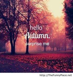 Surprise Me Please