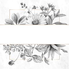 Flower Background Wallpaper, Flower Phone Wallpaper, Flower Backgrounds, Wedding Invitation Vector, Wedding Logo Design, Wreath Drawing, Floral Banners, Instagram Frame, Banner Vector
