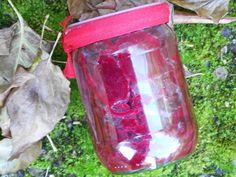 Verboten gut ⚠: Rote ~ Beete in Dornfelder ~ Essig