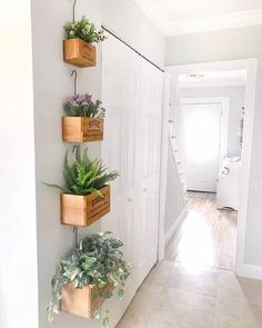 I've really been slacking on the posts lately. Having your house tented (for termites, thanks Florida!) will really throw you off your… Boho Bedroom Decor, Boho Room, Pink And Grey Cushions, Retaining Wall Design, House Tent, Bathroom Plants, Wood Home Decor, Boho Diy, Plant Wall