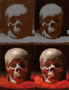 ArtStation - Skull still life, ryan lang