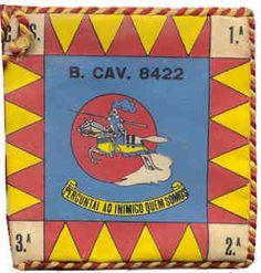 Batalhão de Cavalaria 8422/73 Moçambique