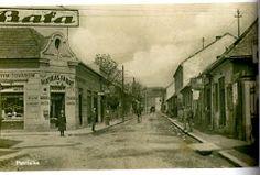 Fotka Bratislava, Times, Historia