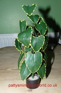 how to: houseplant
