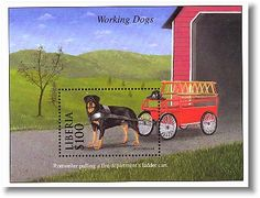 Rottweiler Pulling old fashion fire wagon. (dog stamp)