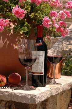 Love relaxing on a nice fall afternoon with a tasty glass of red wine. La Trattoria, Barolo Wine, Wine Vineyards, Wine Photography, Vides, Wine Art, Wine Fridge, Wine Refrigerator, In Vino Veritas