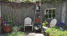 and an old wooden ladder