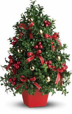 standard Tabletop Christmas Tree, Mini Christmas Tree, Miniature Christmas, Green Christmas, Christmas Colors, Merry Christmas, Christmas Holidays, Xmas, Christmas Gifts