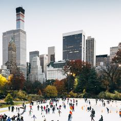 Wollman Rink, Central Park, NY