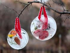 Cool project from http://www.kiwicrate.com/projects/Ice-Sun-Catchers/1082: Ice Sun Catchers