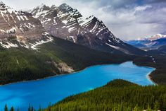 Peyto Lake is one of the numerous lakes in the Rockies that will amaze you. Look at these bright turquoise waters ! Welcome in the Rocky Mountains !
