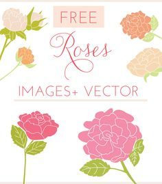 Enjoy This Collection of Free Girly Graphics and Watercolor Clip Art Courtesy of Angie Makes. These Cute, Girly Clip Art Images Are Totally FREE! Rose Images, Art Images, Rose Clipart, Art Clipart, Christmas Fonts, Free Graphics, Vector Free, Eps Vector, Free Vector Images