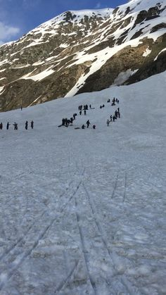 Sleigh and Ski tracks mark the snowy white landscape at Zero Point, Sonmarg, Kashmir, India