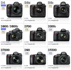 Nikon D4 and D800 by Kent Yu Photography, via Flickr