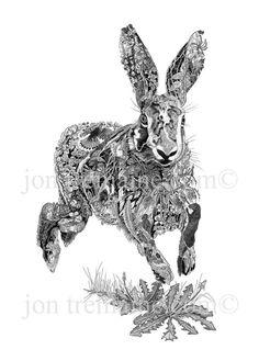 Running hare - Fantastic pen artwork by Jon Tremaine. Hare Illustration, Rabbit Sculpture, Black And White Artwork, Animal Habitats, Rabbit Art, Animal Sketches, Aboriginal Art, Wildlife Art, Print Artist