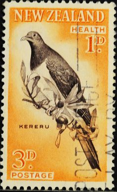 New Zealand semi-postal stamp from 1960 showing a Kereru, which is a NZ pigeon. semi-postal stamps add an additional charge to the face value of the stamp which is allocated to a worthy cause. World Birds, New Zealand Art, Nz Art, Postage Stamp Art, Maori Art, Commonwealth, Kiwiana, Vanuatu, Stamp Collecting