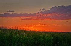 Is this heaven?  Nope just another Iowa cornfield at sunset.  #HDR #Photography