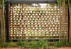 A LOT OF TEACUPS AND SAUCERS :A Garden Partition Design Using Teacups, Created by Jules Arthur and George Richardson