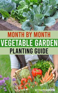 While vegetable gardening, taking note of time is very important. Everything depends on the time. It is very important to determine when to sow the seeds, fertilizer, plant, water, and harvest. Garden Plants Vegetable, Harvest, Cabbage, Seeds, Mom, Vegetables, Water, Gripe Water, Cabbages