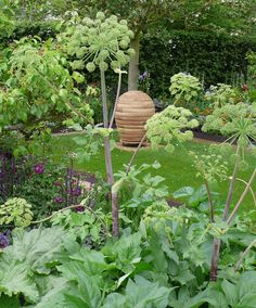 Celebrity Spotting at the Chelsea Flower Show: Gardenista