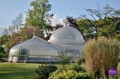 Kibble Palace, Botanic Garden, Glasgow / Mair Studio
