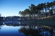 Imagine waking up to this: the view from Woburn Hotel