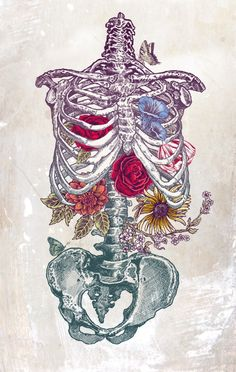 I just love this skeleton and flowers illustration...never would have thought I would think a skeleton was gorgeous! - La Vita Nuova (The New Life) Art Print by Rachel Caldwell | Society6