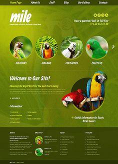 Bird Blog #wordpress Template