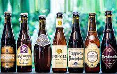 Beer Brewing, Beer Bottle, Good Food Image, Nice Tops, Europe, Drinks, Drinking, Beverages, Beer Bottles