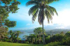 Nambatri, Port Vila, Vanuatu (1168) Vanuatu - http://vanuaturealestate.com/property/nambatri-port-vila-vanuatu-1168/