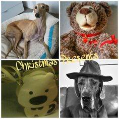 Pics Art, Mobile Photos, Photo Studio, Photo Editing, Presents, Photoshop, Teddy Bear, Toys, Gallery