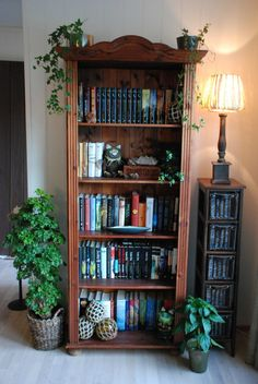 ~*- Mitt nye hjem -*~ (Amariel of the Woodlands) Bookshelves, Bookcase, Eclectic Style, Nye, Pagan, Sweet Home, Room Ideas, Castle, Interiors
