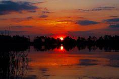 Csodálatos Tisza-tó fényképe.