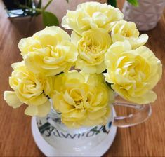 Yellow Carnations, Mini Carnations, White Carnation, Peach Flowers, Cream Flowers, Colorful Flowers, White Flowers, Flowers For Sale, Summer Shades