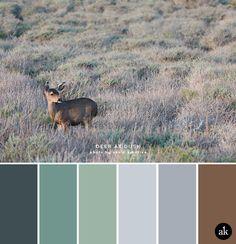 a deer-inspired color palette // algae green, aloe, sage, lavender, fawn (brown) Sage Color Palette, Bedroom Colour Palette, Bedroom Color Schemes, Colour Schemes, Earth Colour Palette, Color Combinations, Palette Verte, Carmel Color, Fawn Colour