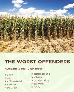 10 Worst GMO Foods: wild caught, organic, and items specifically labeled as Non-GMO are all exceptions to the above!