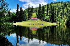One of the Kashmir's most beautiful Lakes .    Banjosa Lake, Rawalakot
