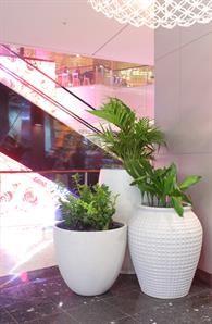 Martin Kellock Pots & Planters || Westfield Bondi Project Westfield Shopping Centre, Shopping Center, Greenery, Planter Pots, Projects, Collection, Shopping Mall, Blue Prints, Plant Pots