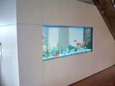 Custom Freshwater Aquarium under home stairs in Melbourne | Aquatecture by Reeflections Aquarium