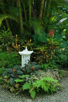 Diamond Botanical Garden, Saint Lucia.
